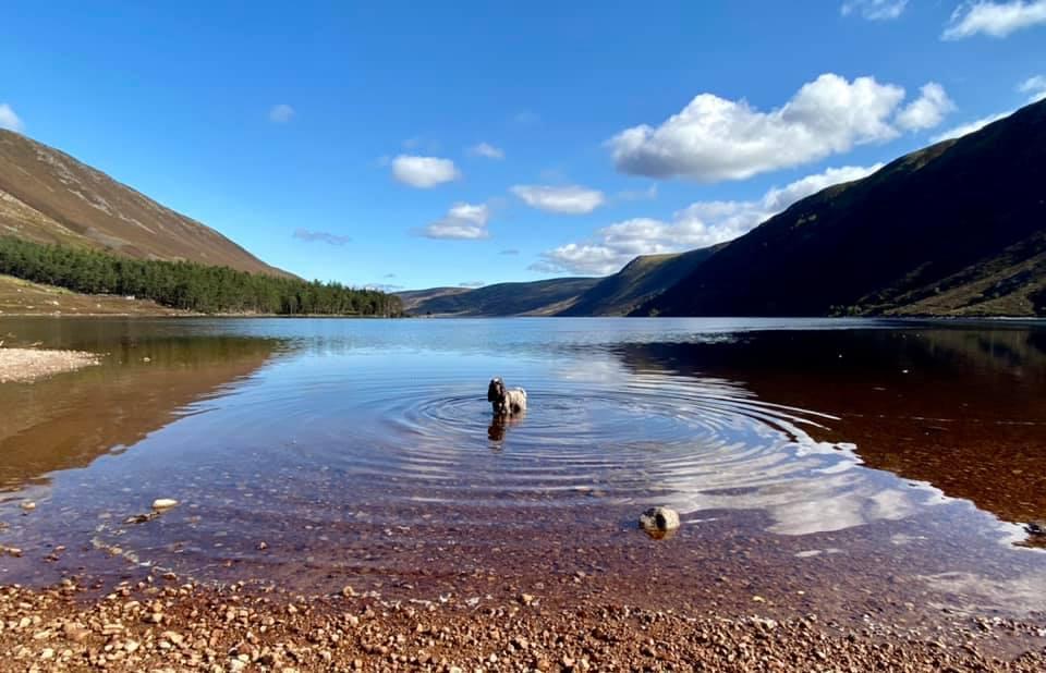 Charlie at Loch Muick
